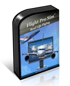 Best Flight Professional Simulator